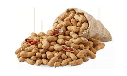 peanuts-2-1